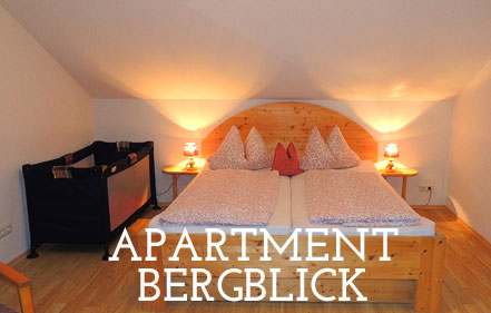Apartment Bergblick